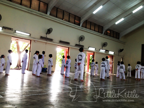 tae-kwon-do-littlekittle-2